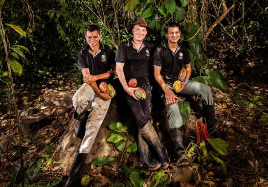 Online chokoladeforedrag direkte fra regnskoven